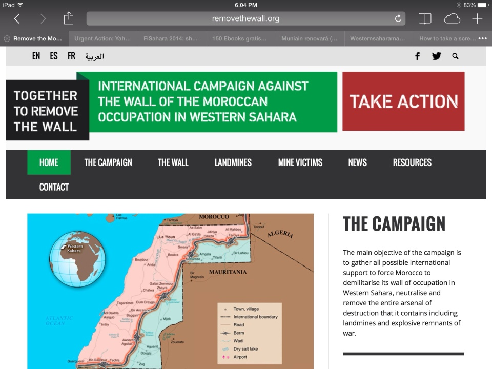 International Campaign